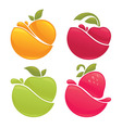 fruit splashes vector image