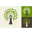 green tree - logo and icon vector image vector image