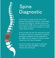 Human spine Template with backbone vector image