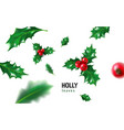 realistic holly ilex with berry and leaves vector image