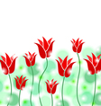 tulip round background vector image vector image