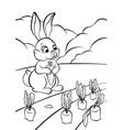 little hare with carrot vector image