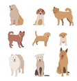Set of dog character Dogs isolated vector image