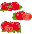 Tomato Set tomatoes and parsley leaves Isolated vector image