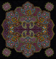 color paisley floral seamless texture vector image