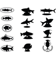 Fish trophies vector image vector image