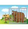 Cartoon zoo bear vector image vector image