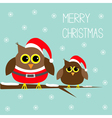 Two cute owls Santa Claus costume hat Snowflakes vector image