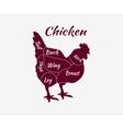 Typographic Chicken Butcher Cuts Diagram vector image
