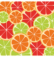 background of many slices of citrus fruit vector image