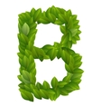 Letter B of green leaves alphabet vector image vector image