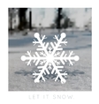 snowflake on a blurred background vector image