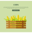 Corn Web Banner in Flat Style Design vector image