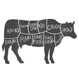 Beef cuts diagram butchering vector image