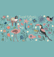 big tropical collection with exotic birds vector image