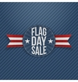 Flag Day Sale patriotic Label with Text and Shadow vector image