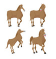 horse brown animal character set vector image