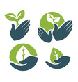 hands and leaves vector image vector image