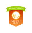 natural organic grain vector image