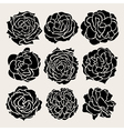 decorative roses set vector image vector image