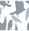 Pattern seamless with birds plus EPS10 vector image