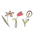 outlined hand drawn flower collection design vector image vector image