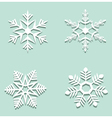 snowflakes with shadow vector image