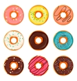 Donut  Donut isolated on a vector image
