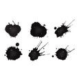 spilled oil vector image