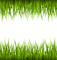 Green grass like frame isolated on white Floral vector image