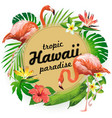 hawaii tropic paradise party vector image