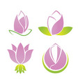 lotus symbol logo collection set vector image