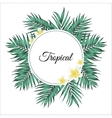 Tropical palm leaves and plumeria flowers frame vector image