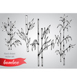 set of hand drawn bamboo branches vector image