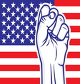 fist american flag resize vector image