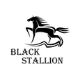 Horse show symbol with purebred stallion at a trot vector image