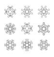 A set of circular ornaments vector image