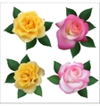 Set of four roses vector image