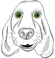 Hand drawn portrait of dog vector image