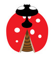 lady-bird or ladybug isolated on light white vector image