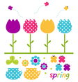 Colorful spring tulips set isolated on white vector image