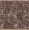 leopard or jaguar seamless pattern modern animal vector image