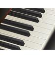 piano keys vector image vector image