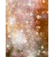 Defocused beidge lights glitter EPS 10 vector image vector image
