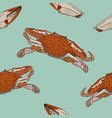 vintage crab drawingseamless pattern vector image