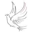 Dove sketch vector image