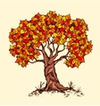 Alone spring tree with colored leaves in a vector image