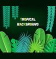 paper cut tropical2-01 vector image