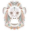 monkey on white background vector image