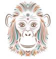 monkey on white background vector image
